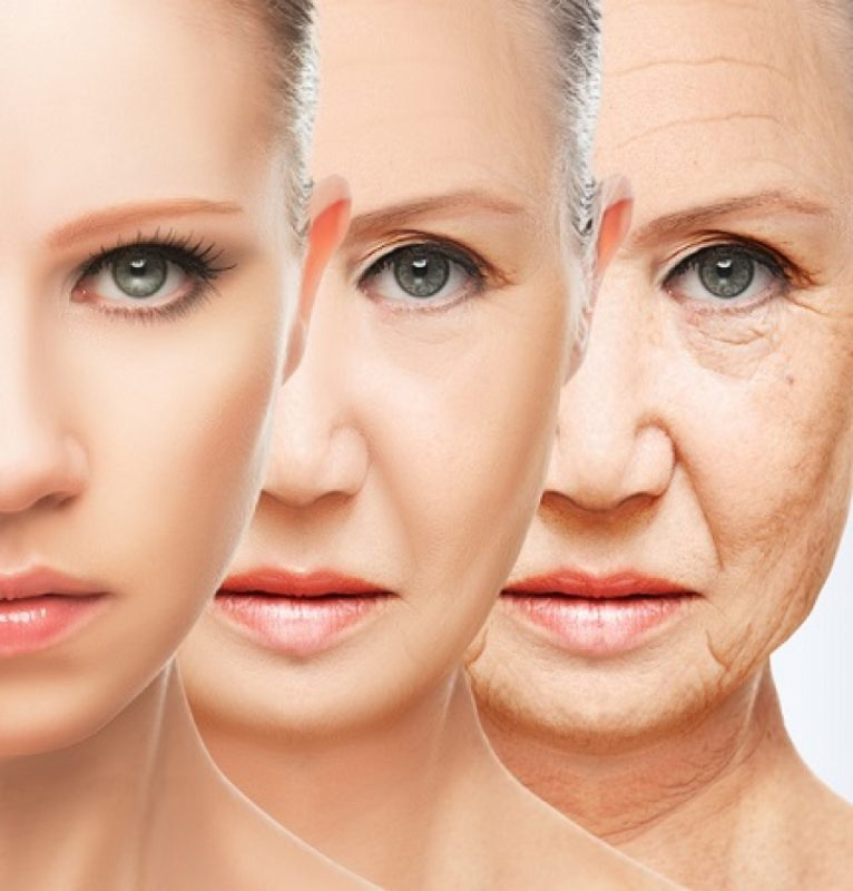 10 Fascinating Facts About Skin Aging